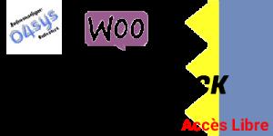 Synchroniser le stock WooCommerce